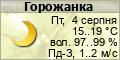 Погода в Горожанці